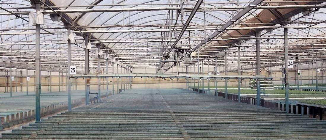Los invernaderos del futuro se diseñan en Almería