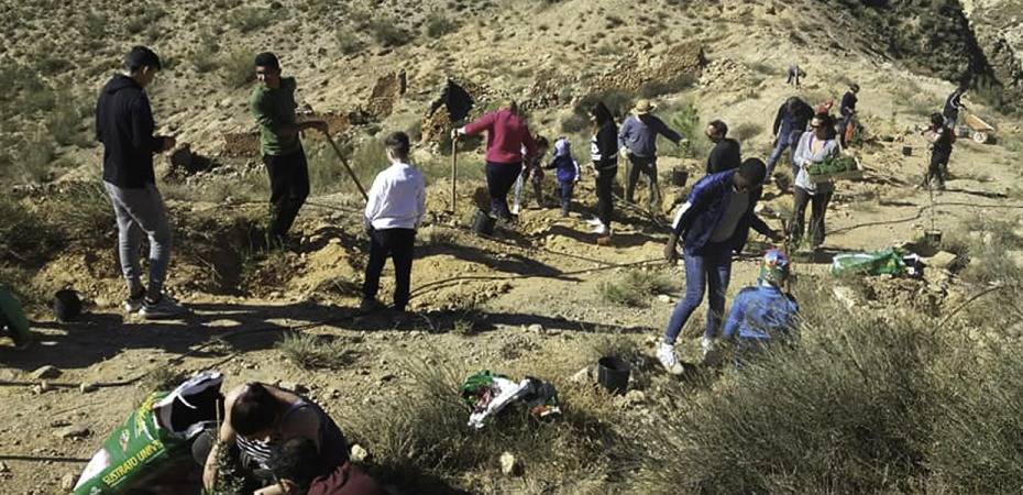 Almería vacía, 10 estrategias contra la despoblación