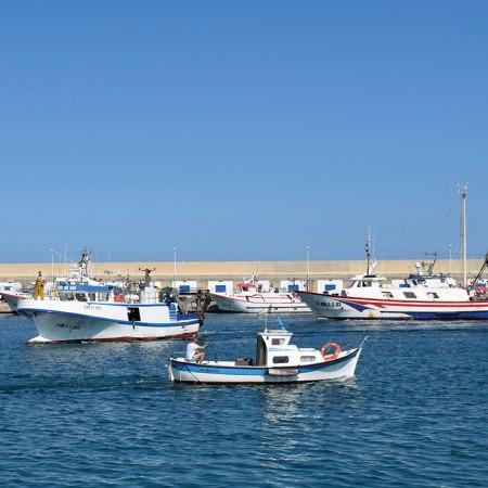 Barcos de pesca en el puerto pesquero de Carboneras. Foto de Miguel Blanco