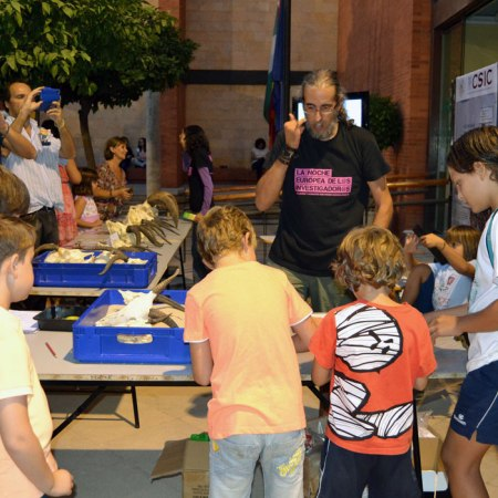 La Noche Europea de los Investigadores, organizada en Almería por la UAL.